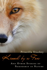 book cover of Kissed by a Fox